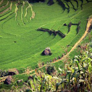 Segunda fase del programa de liberalización del mercado de la Energía en Vietnam