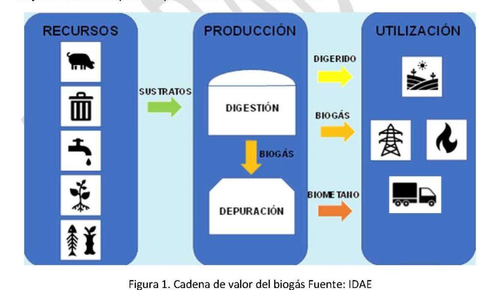 Cadena de valor del biogas - E&M Combustion - Fuente: IDAE