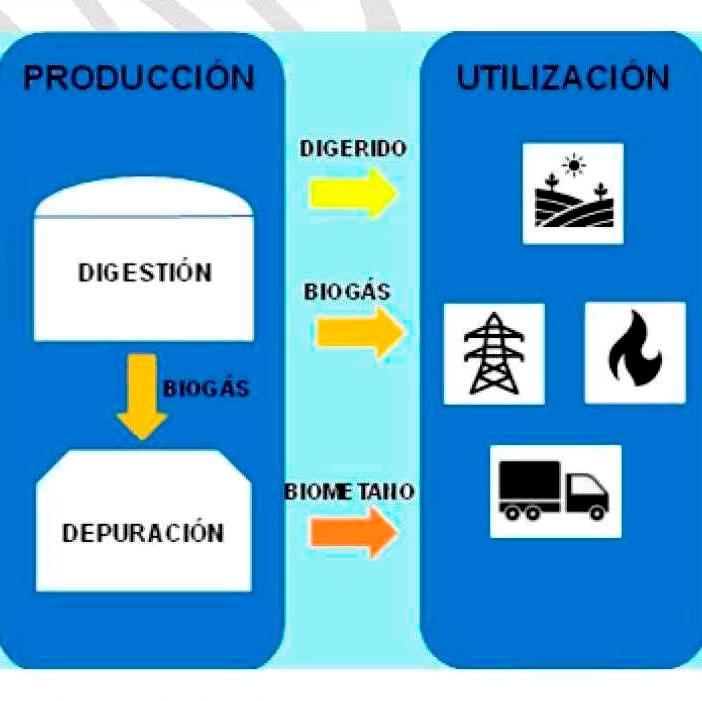 El mercado del Biogás, rápida activación gracias a La Hoja de Ruta de este gas