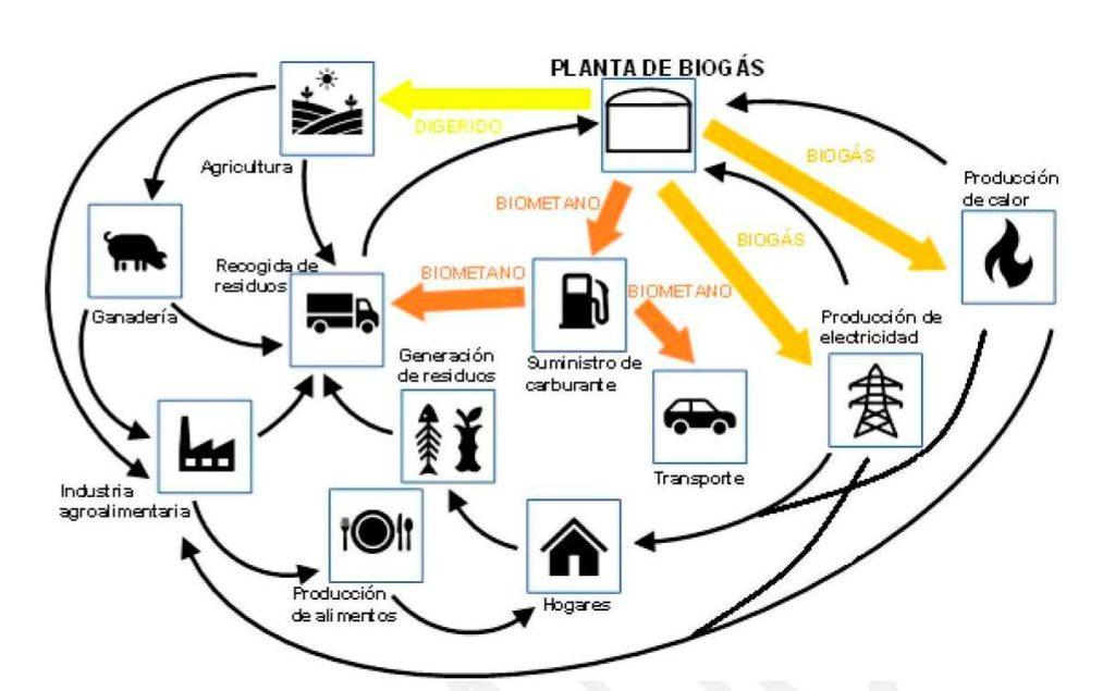 Mercado del Biogas - Fabricante de equipos de biogas - E&M Combustion - Fuente Miteco